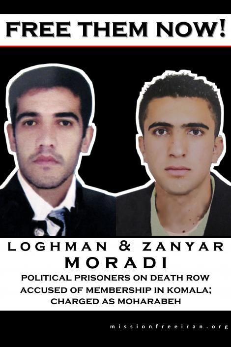 free-loghman-zanyar