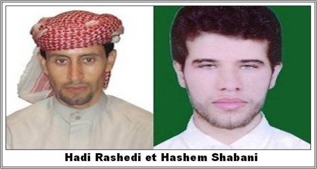 hashem-shabani-hadi-rashedi-2