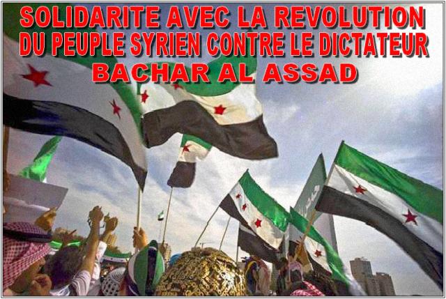 syrian-revolt2011-2014