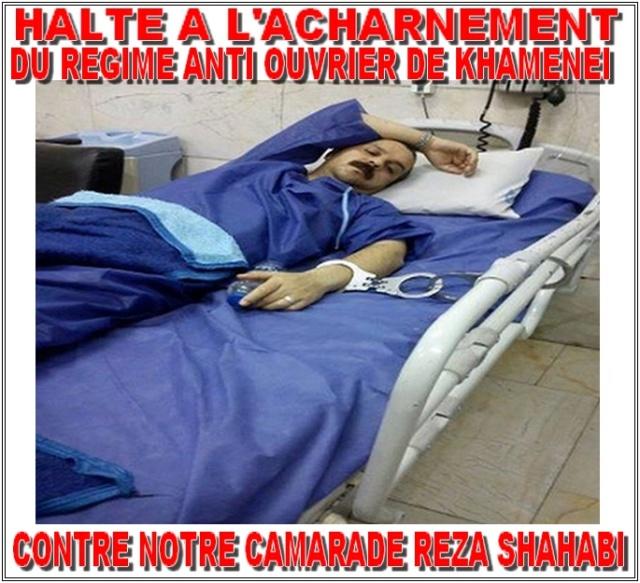 reza-shahabi-libération1