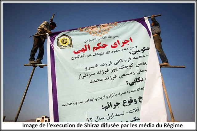 shiraz3