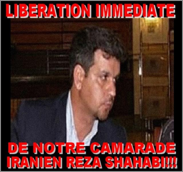 reza-shahabi4